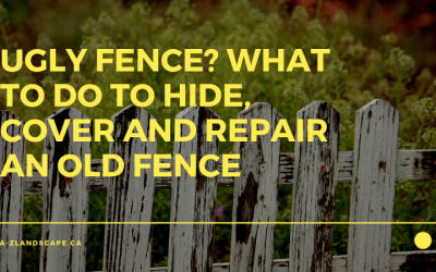 Hide That Ugly Fence