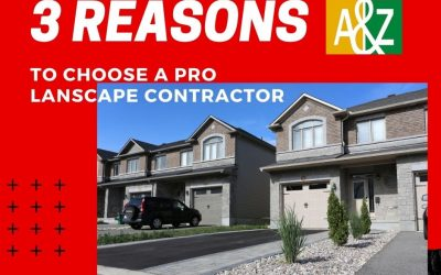 3 Reasons To Work With A Professional Paving Company
