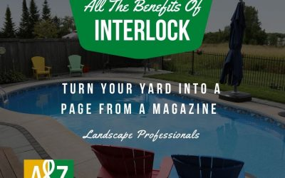 What Are The Benefits Of Interlock Paved Landscaping?
